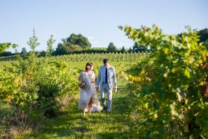 a bride and groom walking through the bordeaux vines at chateau rigaud in France